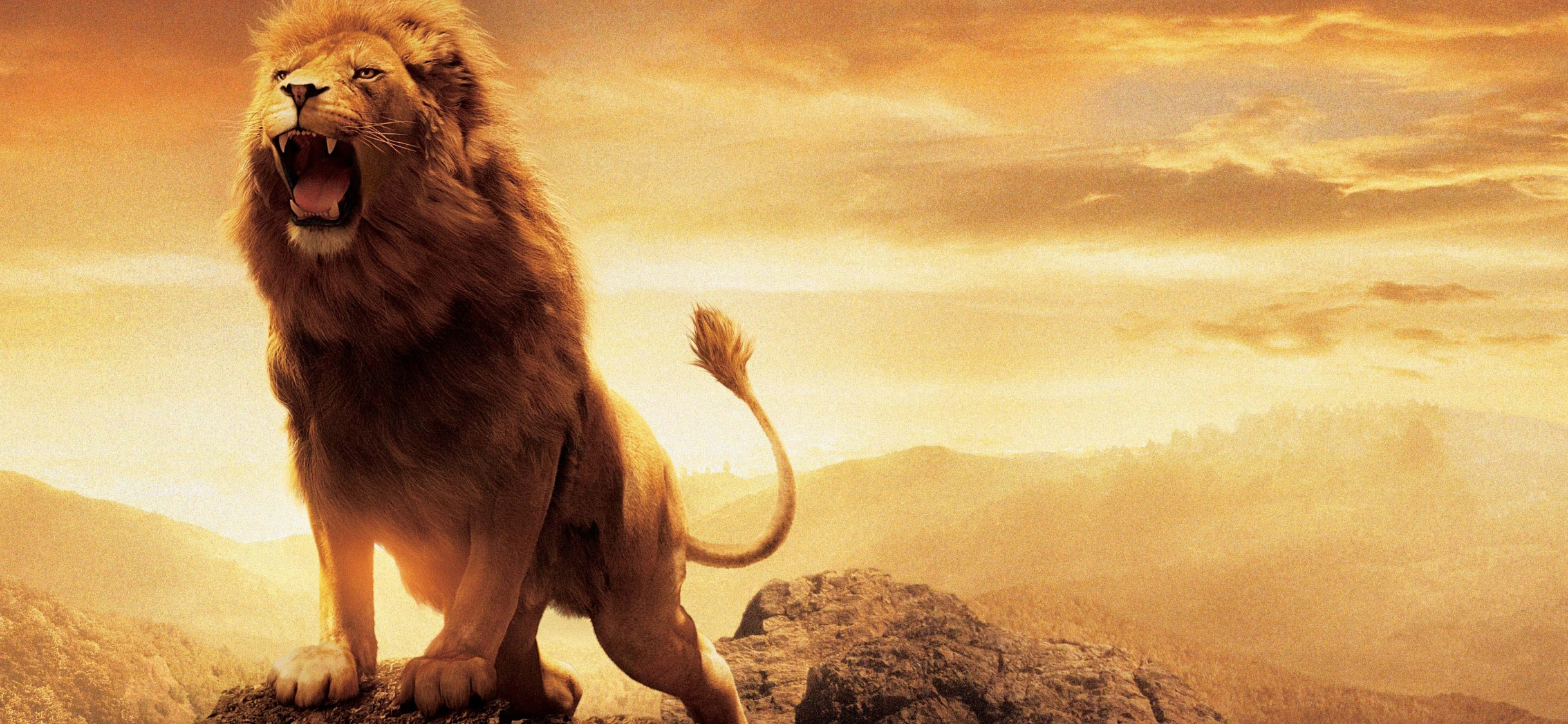 Aslan Narnia Lion Hd Wallpaper For Desktop And Mobiles Iphone X Hd