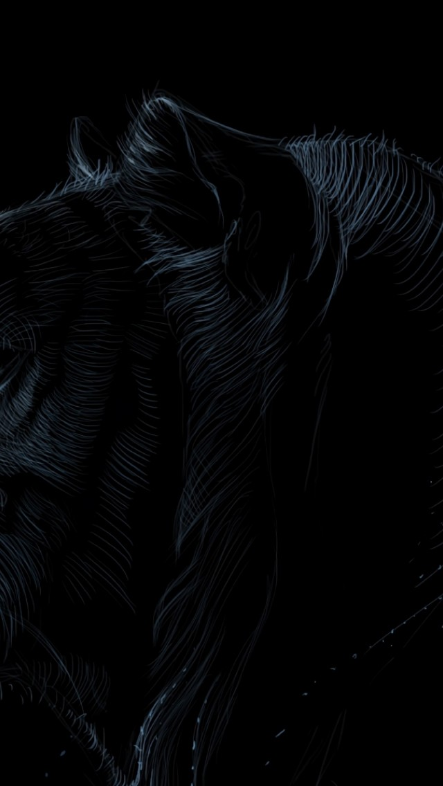 Dark Tiger Face Hd Wallpaper Iphone 5 5s Ipod Hd Wallpaper Wallpapers Net