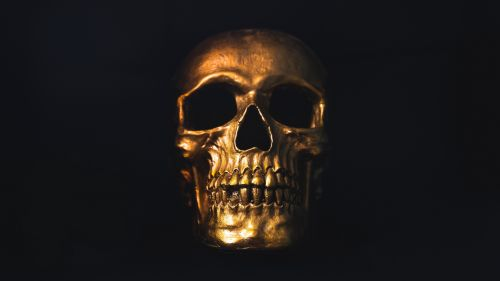 Gold skull HD Wallpaper