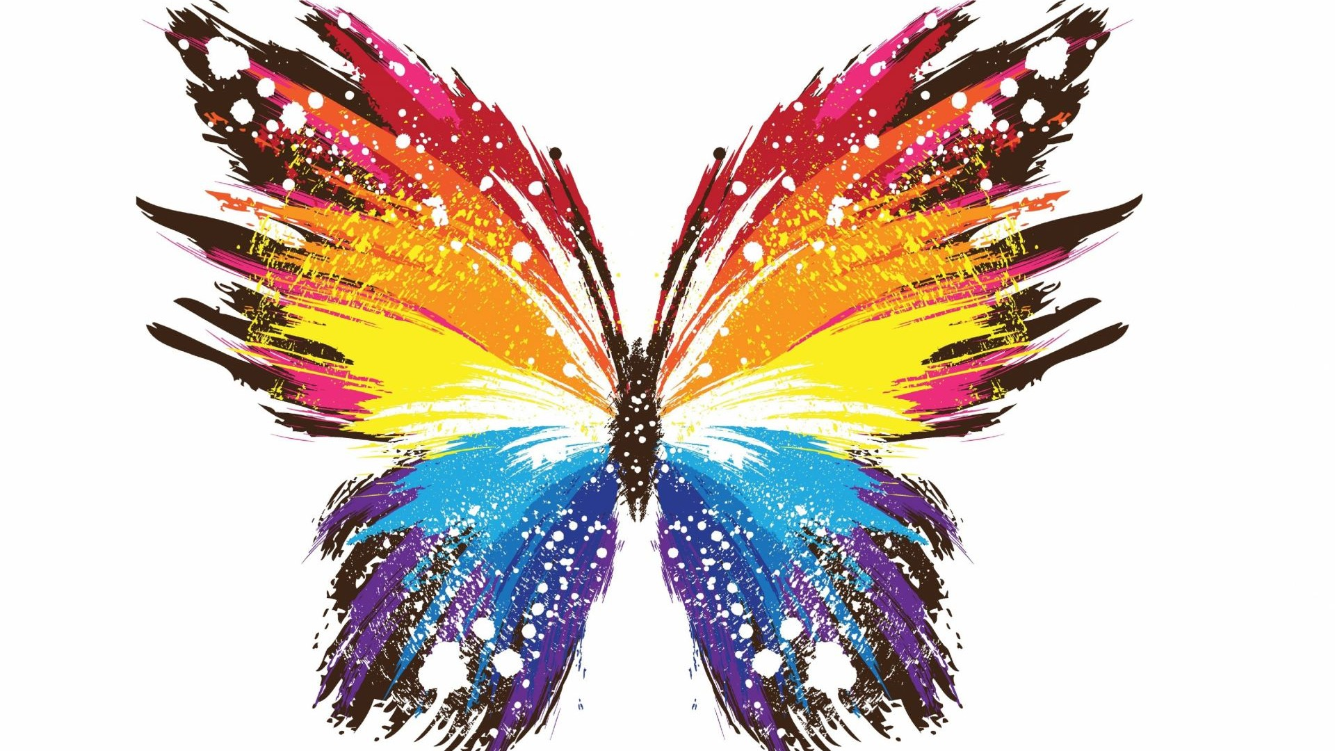 3d Abstract Free High Quality Colourful Butterfly Wallpaper