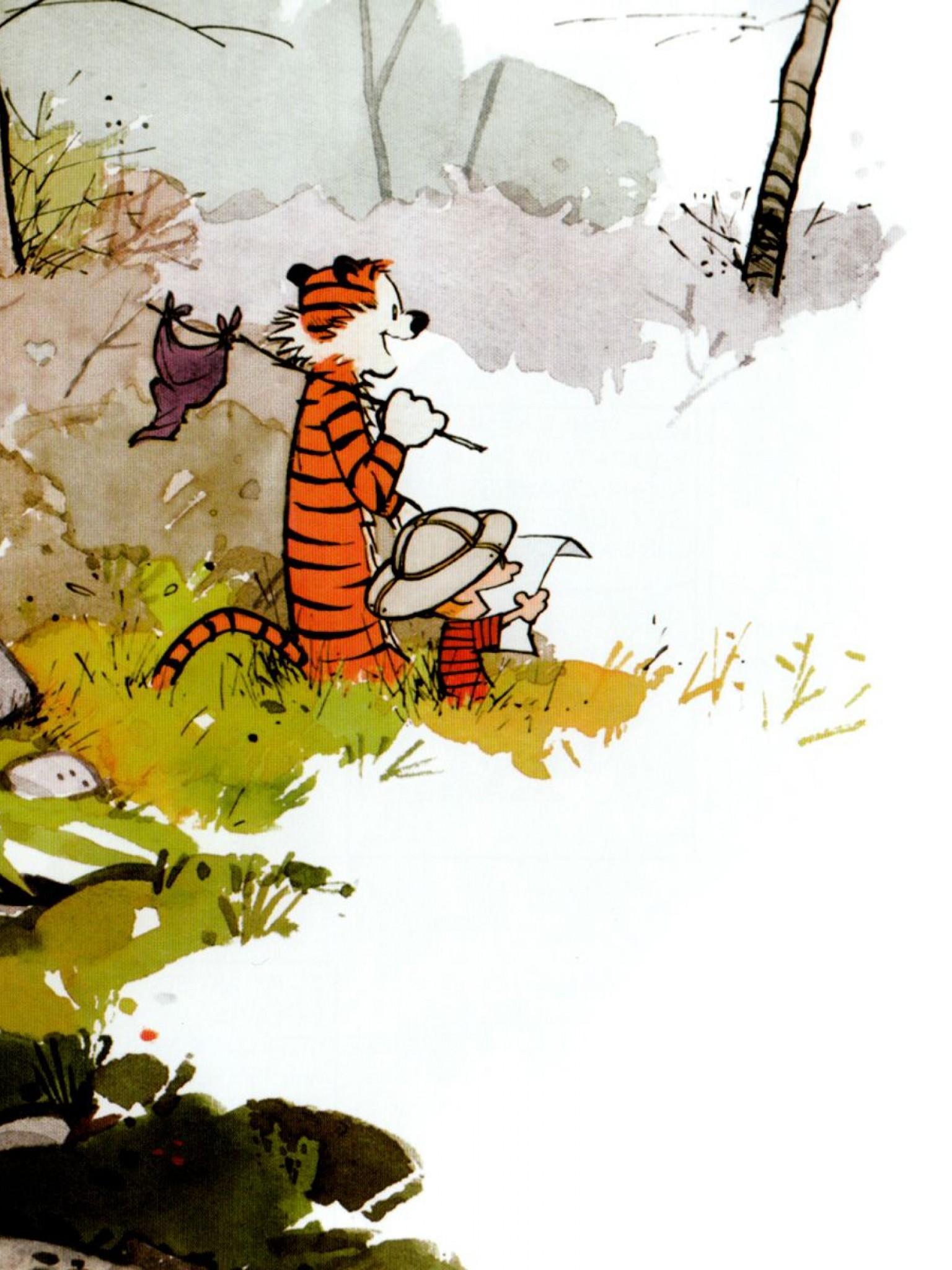 Calvin And Hobbes Hd Wallpaper Retina Ipad Hd Wallpaper