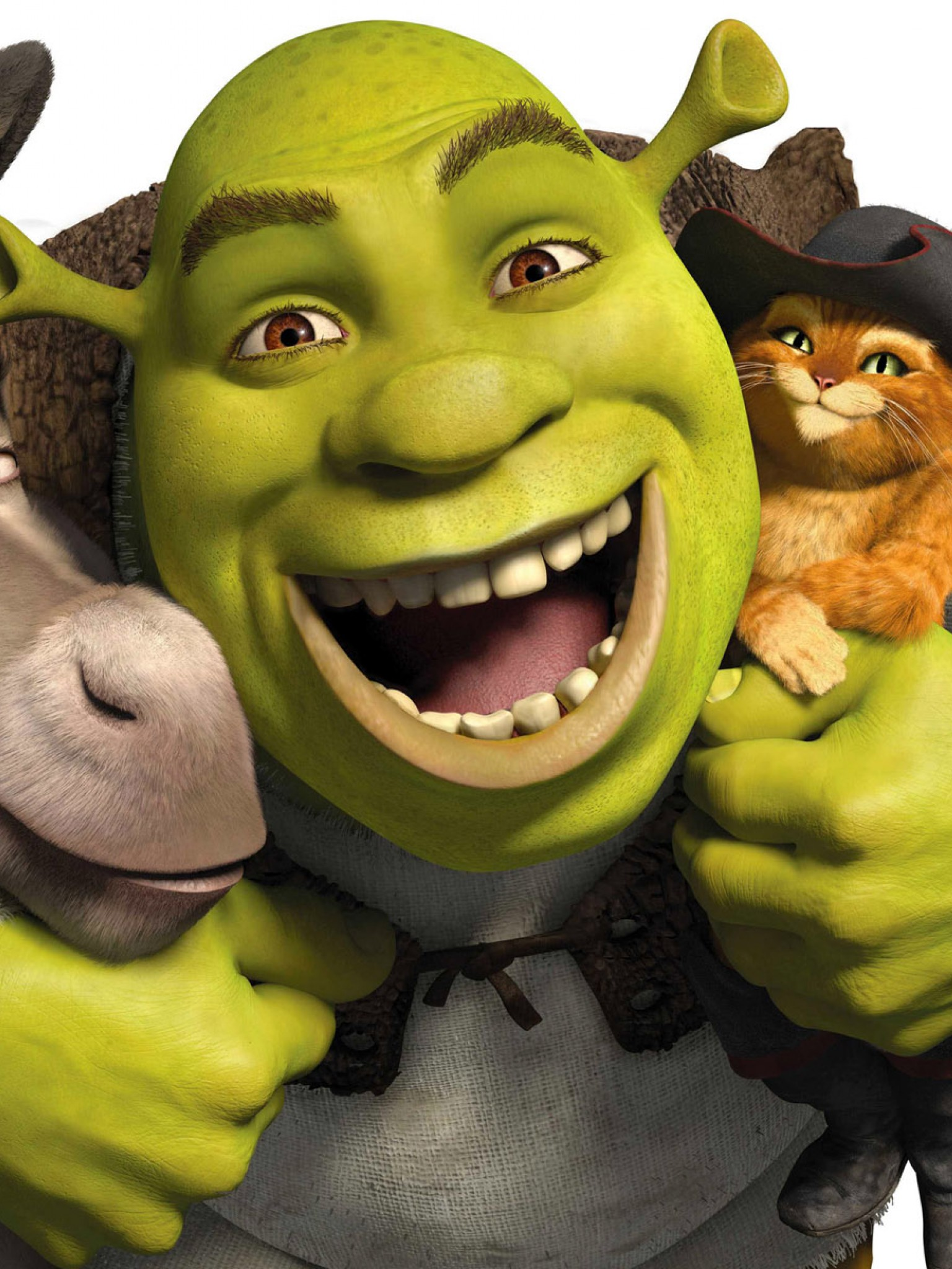 Donkey Shrek Puss In Boots Wallpaper For Desktop And Mobiles