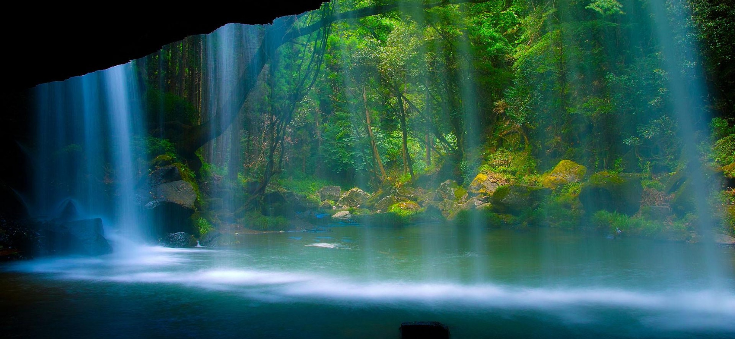 Download Free Rainforest Waterfall Full Hd Wallpaper Iphone X Hd