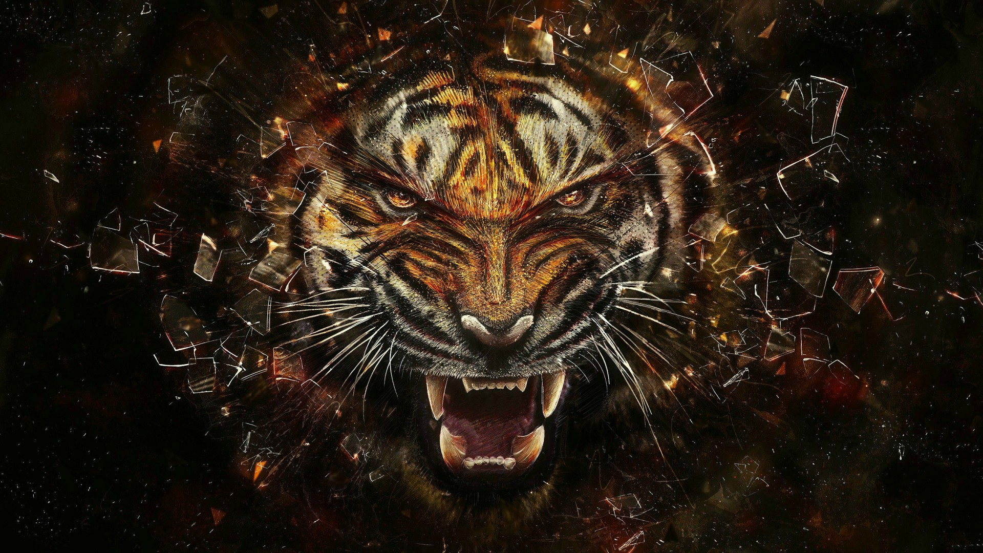 Tiger Hd Wallpaper Iphone 7 Plus Iphone 8 Plus Hd