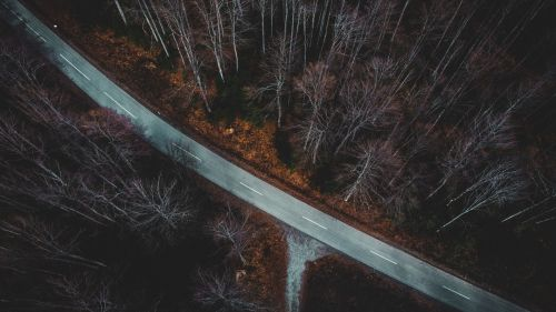 Forest road aerial view HD Wallpaper