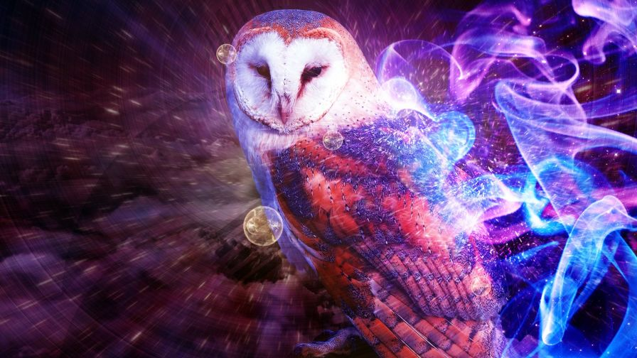 Free Cute Colorful Owl Wallpaper for Desktop and Mobiles