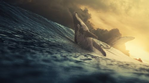 Giant whale at the ocean HD Wallpaper