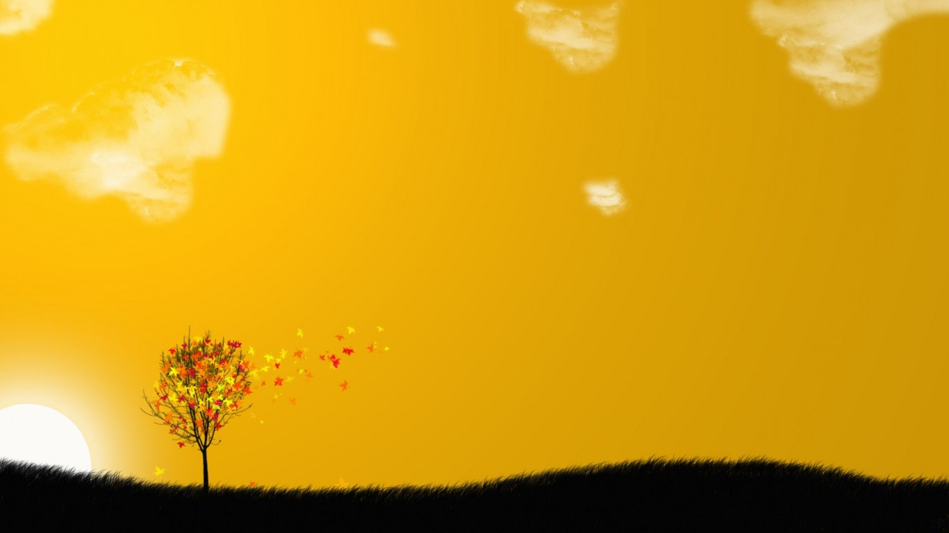 Orange Breeze Hd Wallpaper for Desktop and Mobiles
